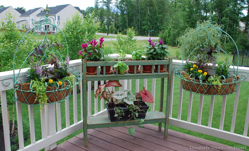 New deck planters plants uniquely yours or mine for Privacy planters for decks