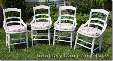 White painted Vintage oak chairs owl print fabric