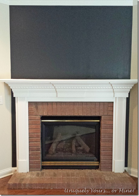 Fireplace with Raccoon Fur painted wall