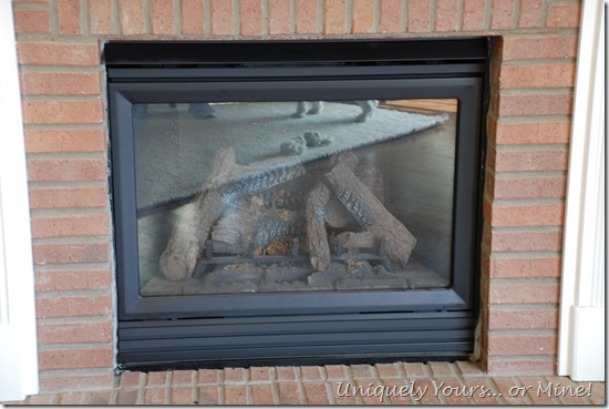 Painted fireplace insert with high heat paint