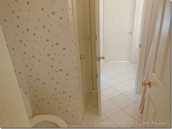 before tub & toilet bathroom area