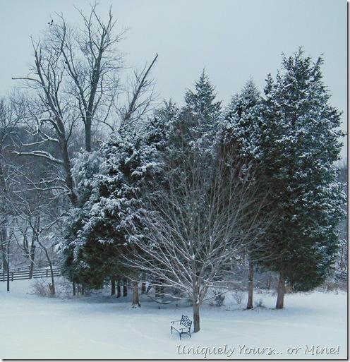 Louisville, KY snow