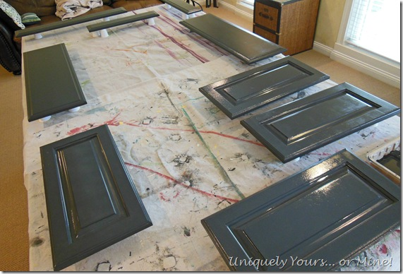 painted door and drawer fronts
