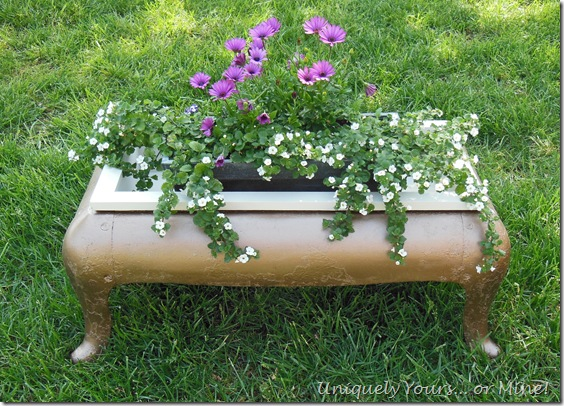 upcycled antique iron stove base into planter