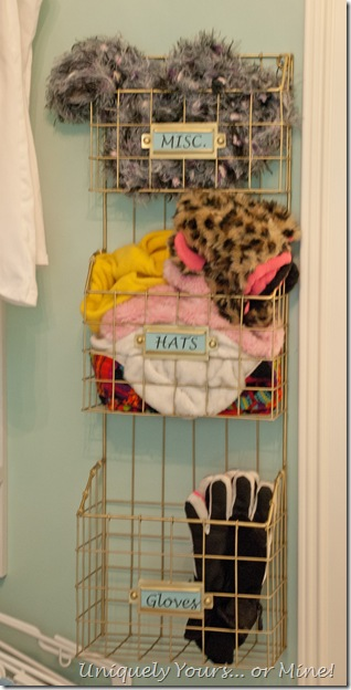 Wire basket organizor for closet