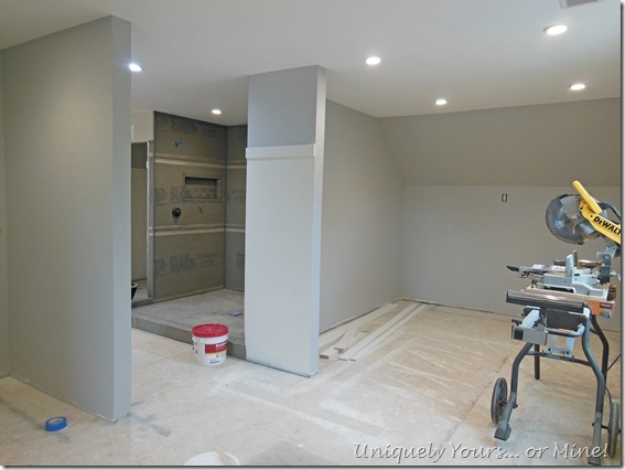 Master closet renovation