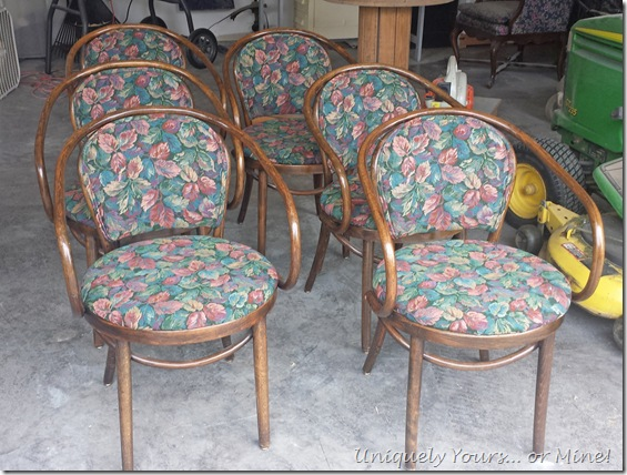 Upholstered Thonet dining chairs