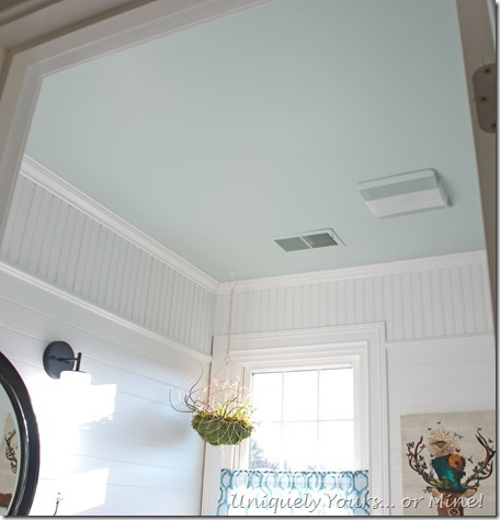 Blue painted bathroom ceiling