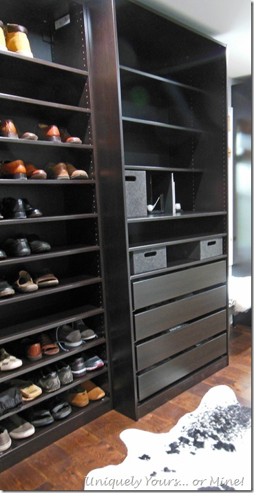 Ikea Brown Black PAX Wardrobes in custom closet