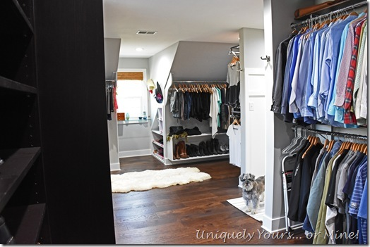 Renovated closet turned dressing room with cute Schnoodle